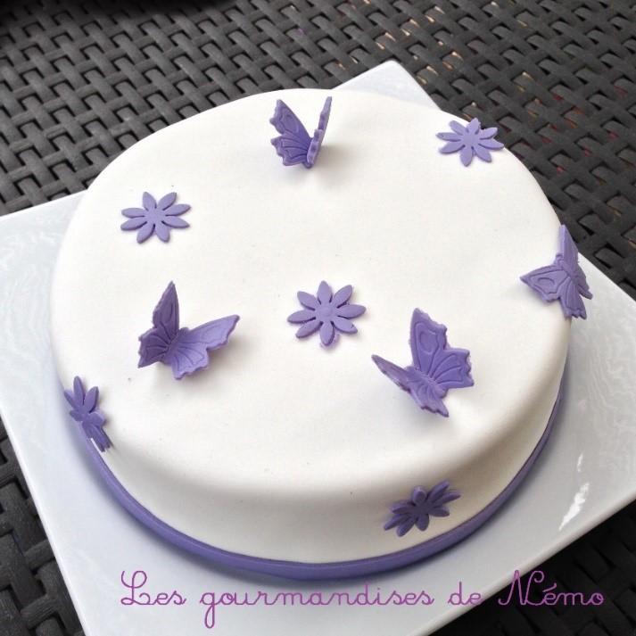 gâteau d'anniversaire papillons